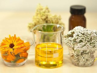 Naturalny olej jojoba – płynne złoto dla skóry
