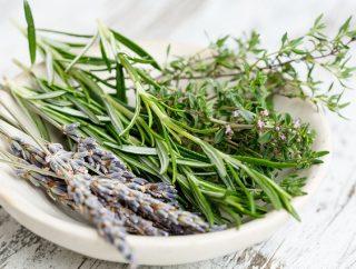 Czym są zioła szwedzkie?