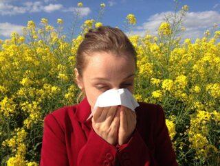 Popularne alergie – czym jest zapalenie błony śluzowej nosa?
